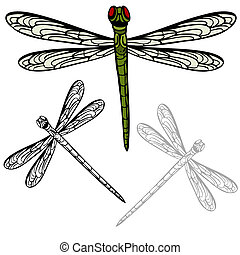 Realistic Dragonfly - An image of a realistic dragonfly.