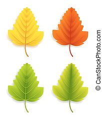 Realistic Eco Friendly Leaves for Spring Season. Vector...