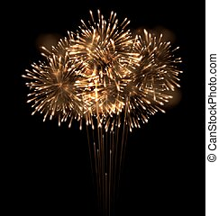 Realistic Fireworks Exploding in the Night Sky