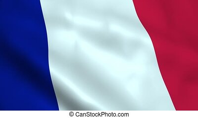 Realistic France flag