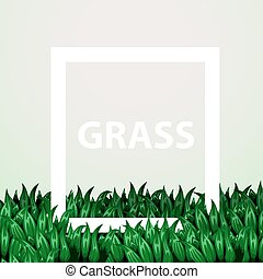 Realistic fresh grass with frame. Eco concept.