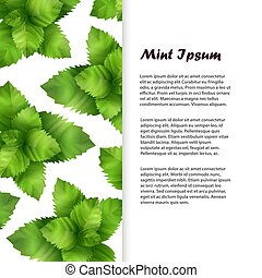 Realistic fresh mint leaves banner