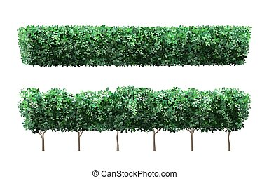Realistic garden plant fence. Nature green seasonal bushes, tree crown bush foliage and green fence with cute flowers. Garden shrub vector illustration set