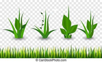 Realistic Green grass.