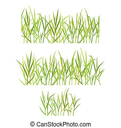 Realistic green grass. Vector illustration isolated on white...