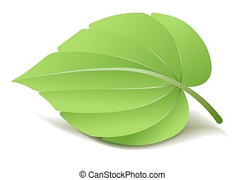 Realistic Green Leaf. Vector Illustration isolated on white
