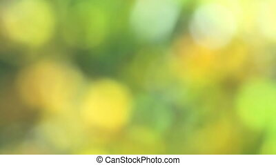 realistic green natural bokeh light