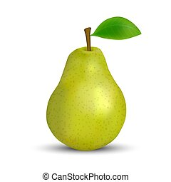 realistic green pear isolated