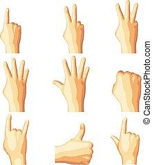 Realistic human hand gesture set in five tones.