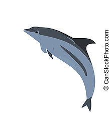 Realistic illustration of a dolphin
