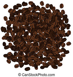 Realistic illustration of coffee beans. Vector