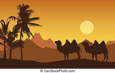 Realistic illustration of mountain landscape in the desert. Two camels near oasis with palm trees, under orange morning sky with rising sun, vector