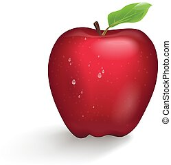 Realistic illustration of red Apple isolated on white background