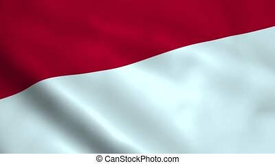 Realistic Indonesia flag