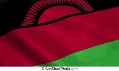 Realistic Malawi flag