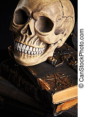 Realistic model of a human skull with teeth on a wooden dark table, black background. Medical science or Halloween horror concept. Close-up shot.