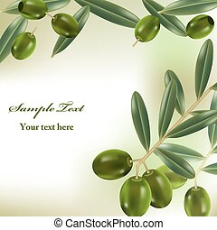 Realistic olives background. Illustration vector.