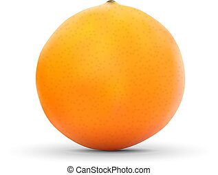 realistic orange isolated on white background.