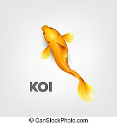 Realistic Oriental Bright Yellow Koi Fish Vector