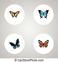 Realistic Papilio Ulysses, Tiger Swallowtail, Monarch And Other Vector Elements. Set Of Butterfly Realistic Symbols Also Includes Blue, Monarch, Tiger Objects.