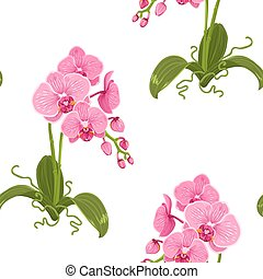Realistic phalaenopsis moth orchid floral pattern