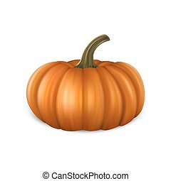 Realistic pumpkin icon closeup isolated on white background. Halloween Symbol. Design template, stock vector illustration, eps10