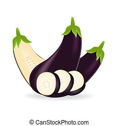 Realistic purple eggplant isolated on a white background.