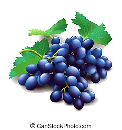 Realistic purple grapes bunch with green leaves isolated on white