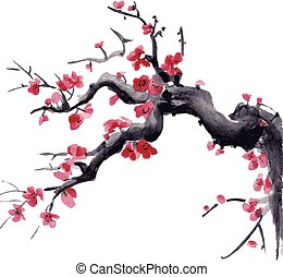Realistic sakura blossom watercolor isolated on white background.