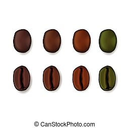 Realistic set of coffee beans showing various stages of roasting isolated on white background. Vector illustration.
