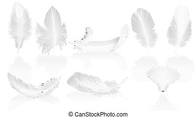 Realistic soft white feathers on glossy background. White bird falling feather set vector illustration.