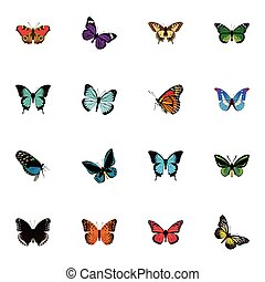Realistic Summer Insect, Milkweed, Tiger Swallowtail And Other Vector Elements. Set Of Butterfly Realistic Symbols Also Includes Pink, Morpho, Monarch Objects.