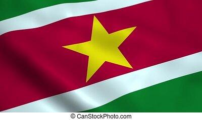 Realistic Suriname flag