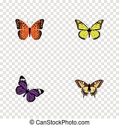 Realistic Tiger Swallowtail, Archippus, Butterfly And Other Vector Elements. Set Of Butterfly Realistic Symbols Also Includes Yellow, Swallowtail, Tiger Objects.