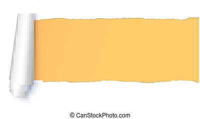 Realistic torn open paper with space for text on orange, horizontal background, holes in paper. Torn strip of paper with uneven, torn edges. Coiling torn strip of paper.