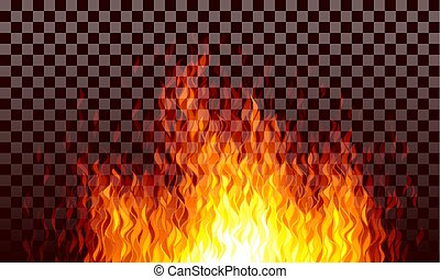 Realistic transparent vector fire flames on black background
