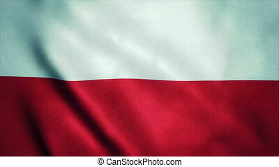 Realistic Ultra-HD flag of the Poland waving in the wind. Seamless loop with highly detailed fabric texture