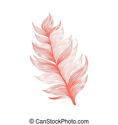 Realistic Vector Isolated Flying Feather