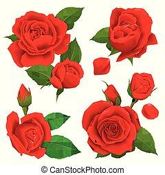ruské růže datování