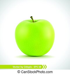 realistico, illustrazione, di, uno, mela verde
