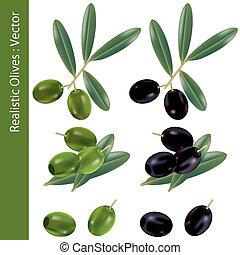 realistisch, olijven