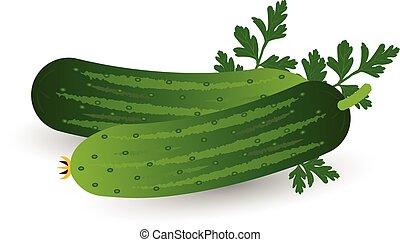 realistisch, peterselie, vrijstaand, achtergrond., komkommer, witte