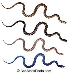 realistisch, set, slangen, mooi