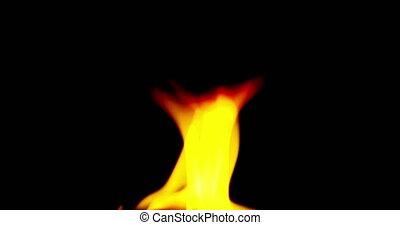 realistisch, vuur, vlammen, branden, beweging, op, zwarte achtergrond, lus, seamless, gereed