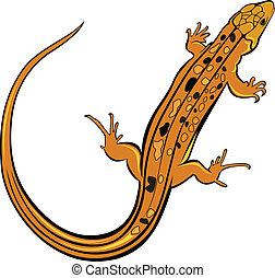 realistisk, ödla, gecko