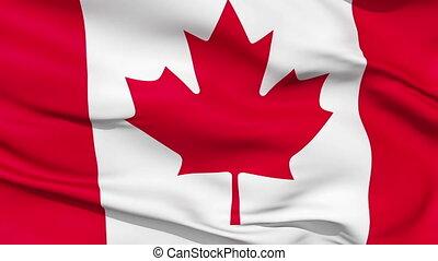 realistyczny, kanada bandera, w wietrze