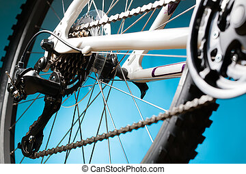 Rear mountain bike cassette on the wheel with chain -...