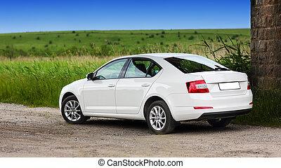 rear-side, vista, di, uno, automobile, su, natura