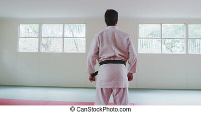 Rear view judoka standing on the judo mat - Rear view of a ...