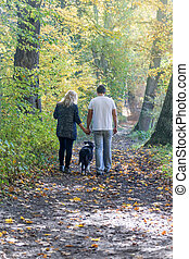 Rear view of a couple walking through an autumn park
